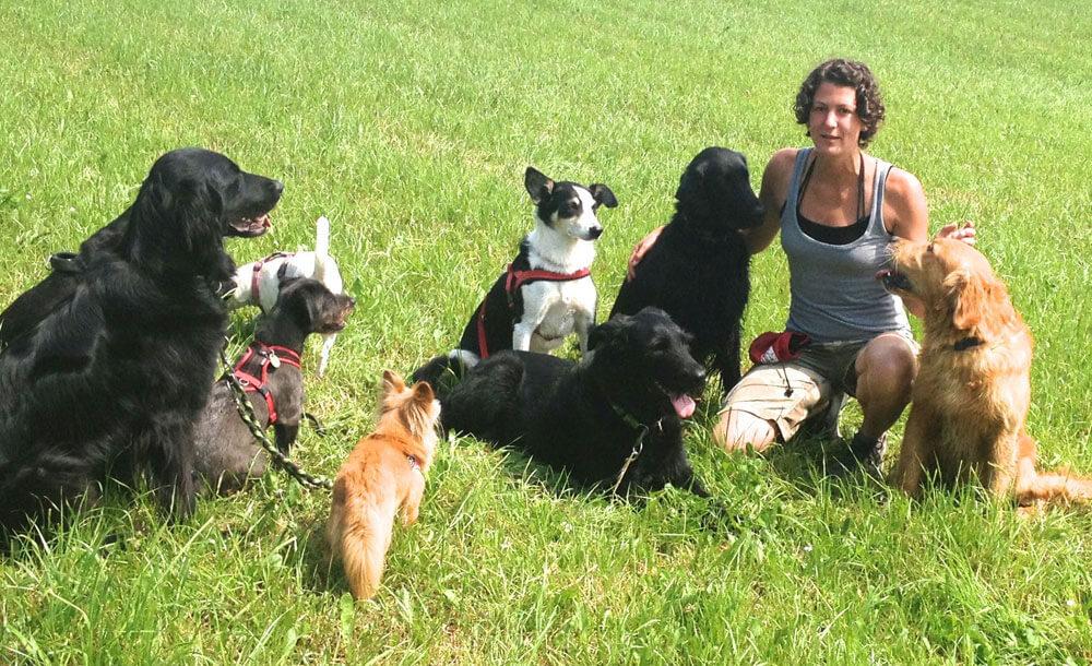 Melanie Müller Quine im Rudel von Hunden