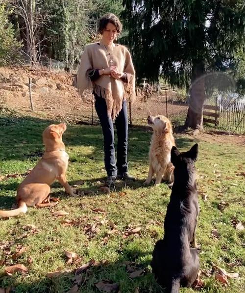 Hundeverhaltenstherapeutin Melanie Müller Quine mit 3 ihrer Hunde