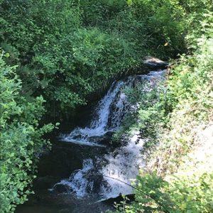 Unser eigener Bach befindet sich direkt hinter der Stein-Mühle